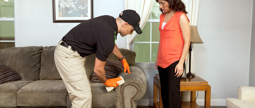 Farmington, CT carpet upholstery cleaning