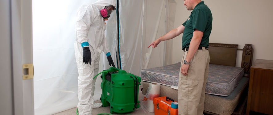Farmington, CT mold removal process